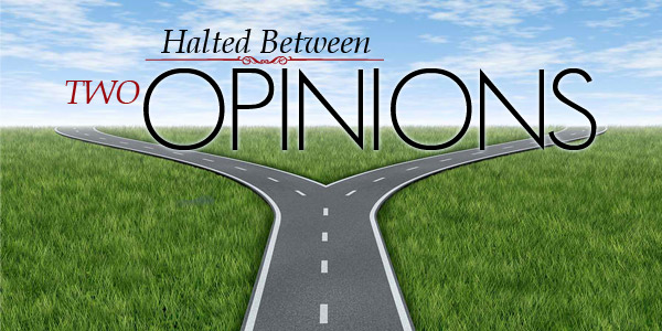 Halted-Between-Two-Opinions